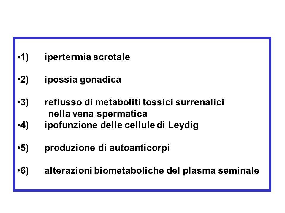 1) ipertermia scrotale. 2) ipossia gonadica. 3) reflusso di metaboliti tossici surrenalici.