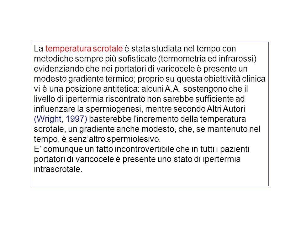 La temperatura scrotale è stata studiata nel tempo con metodiche sempre più sofisticate (termometria ed infrarossi) evidenziando che nei portatori di varicocele è presente un modesto gradiente termico; proprio su questa obiettività clinica vi è una posizione antitetica: alcuni A.A. sostengono che il livello di ipertermia riscontrato non sarebbe sufficiente ad influenzare la spermiogenesi, mentre secondo Altri Autori (Wright, 1997) basterebbe l incremento della temperatura scrotale, un gradiente anche modesto, che, se mantenuto nel tempo, è senz'altro spermiolesivo.
