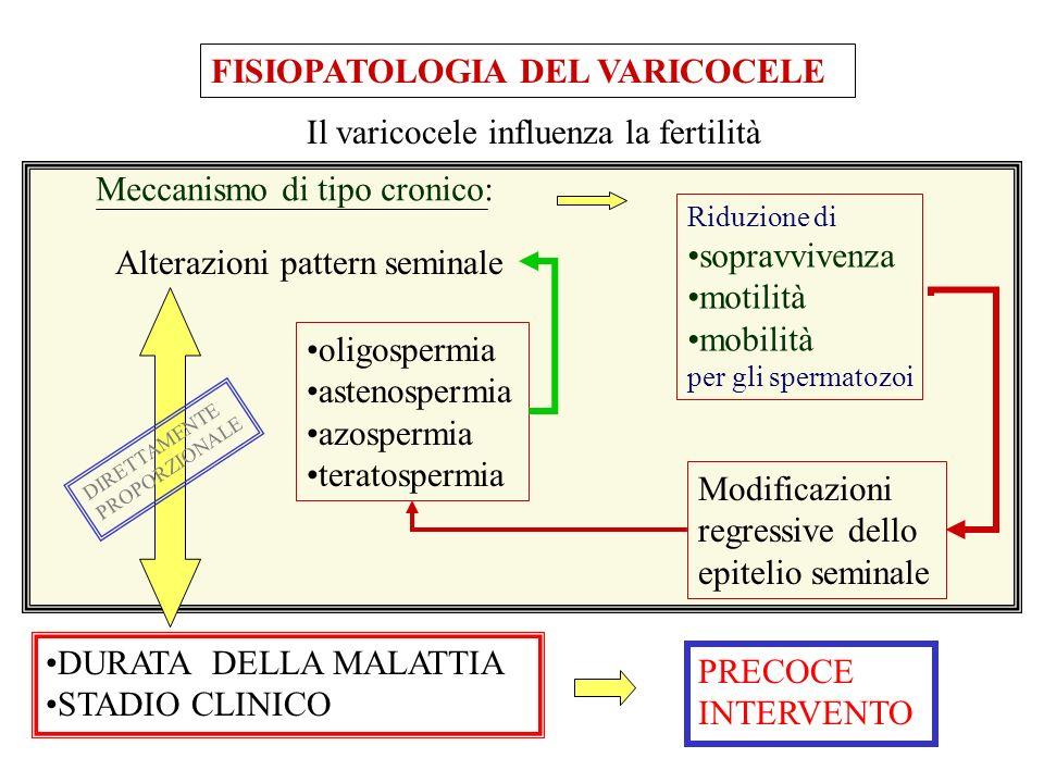FISIOPATOLOGIA DEL VARICOCELE