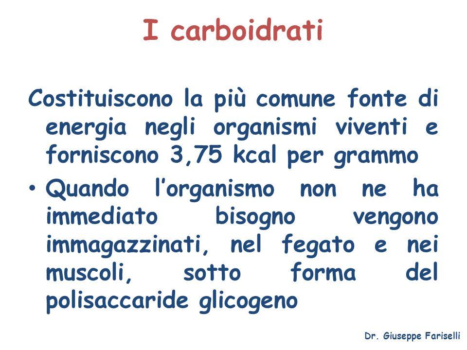 I carboidrati Costituiscono la più comune fonte di energia negli organismi viventi e forniscono 3,75 kcal per grammo.