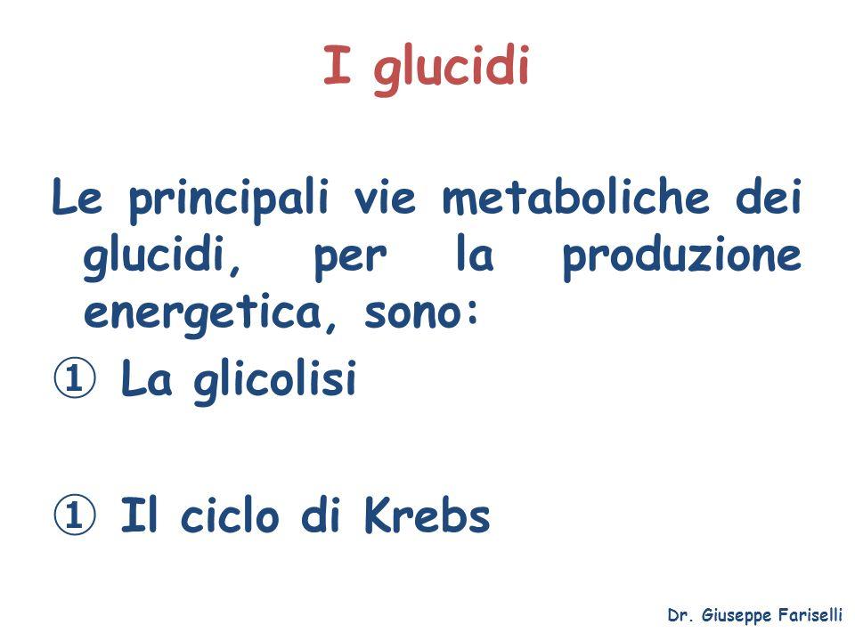 I glucidi Le principali vie metaboliche dei glucidi, per la produzione energetica, sono: La glicolisi.