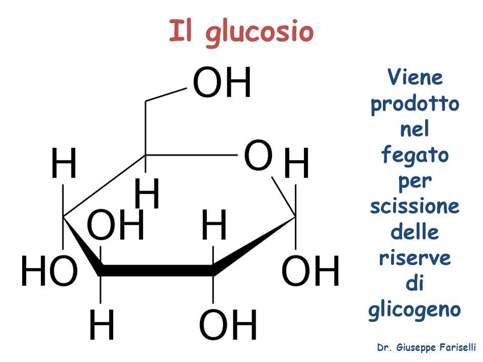 Viene prodotto nel fegato per scissione delle riserve di glicogeno