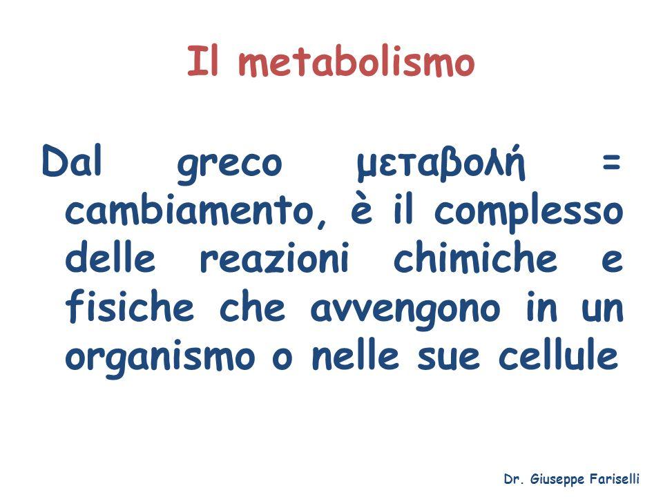 Il metabolismo Dal greco μεταβολή = cambiamento, è il complesso delle reazioni chimiche e fisiche che avvengono in un organismo o nelle sue cellule.