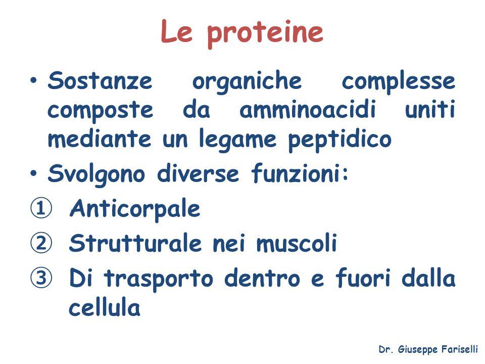 Le proteine Sostanze organiche complesse composte da amminoacidi uniti mediante un legame peptidico.