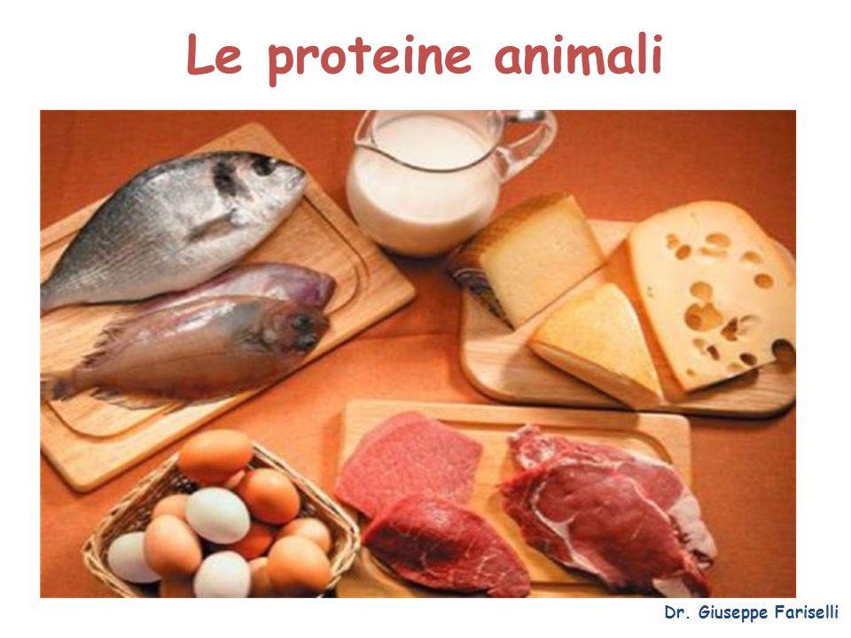 Le proteine animali Dr. Giuseppe Fariselli