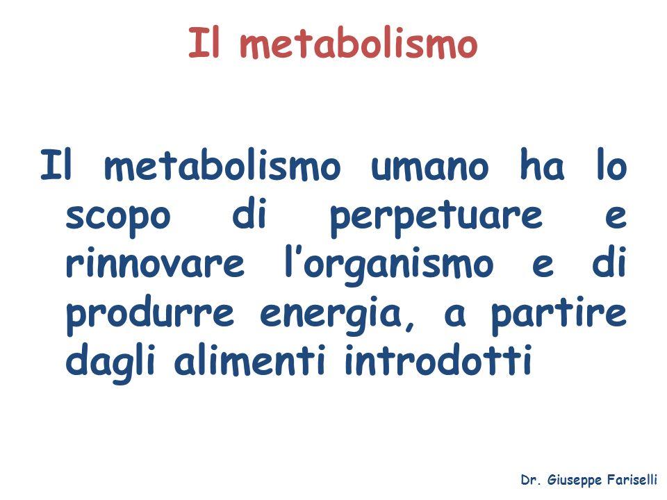 Il metabolismo Il metabolismo umano ha lo scopo di perpetuare e rinnovare l'organismo e di produrre energia, a partire dagli alimenti introdotti.