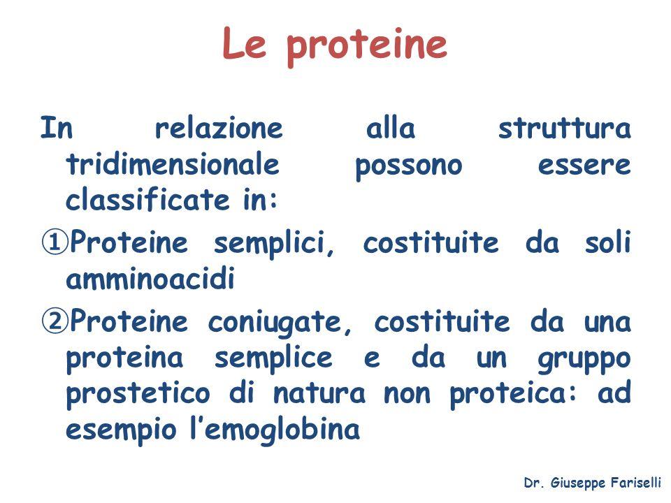 Le proteine In relazione alla struttura tridimensionale possono essere classificate in: Proteine semplici, costituite da soli amminoacidi.