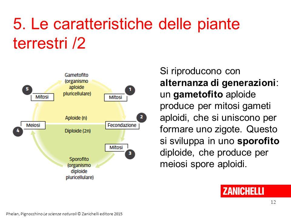 5. Le caratteristiche delle piante terrestri /2