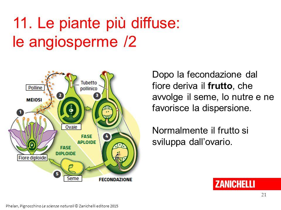 11. Le piante più diffuse: le angiosperme /2
