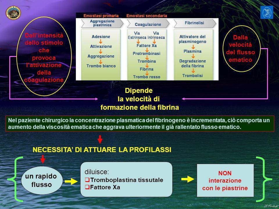 Dipende la velocità di formazione della fibrina un rapido flusso