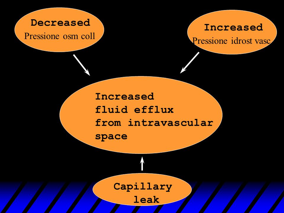 Decreased Increased Increased fluid efflux from intravascular space