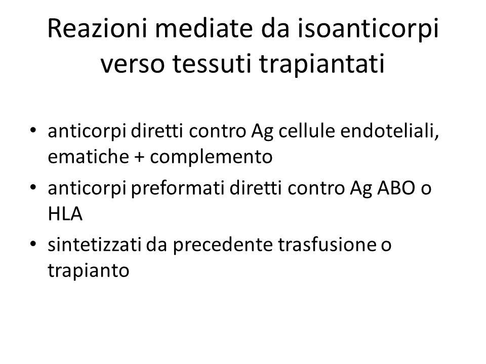 Reazioni mediate da isoanticorpi verso tessuti trapiantati