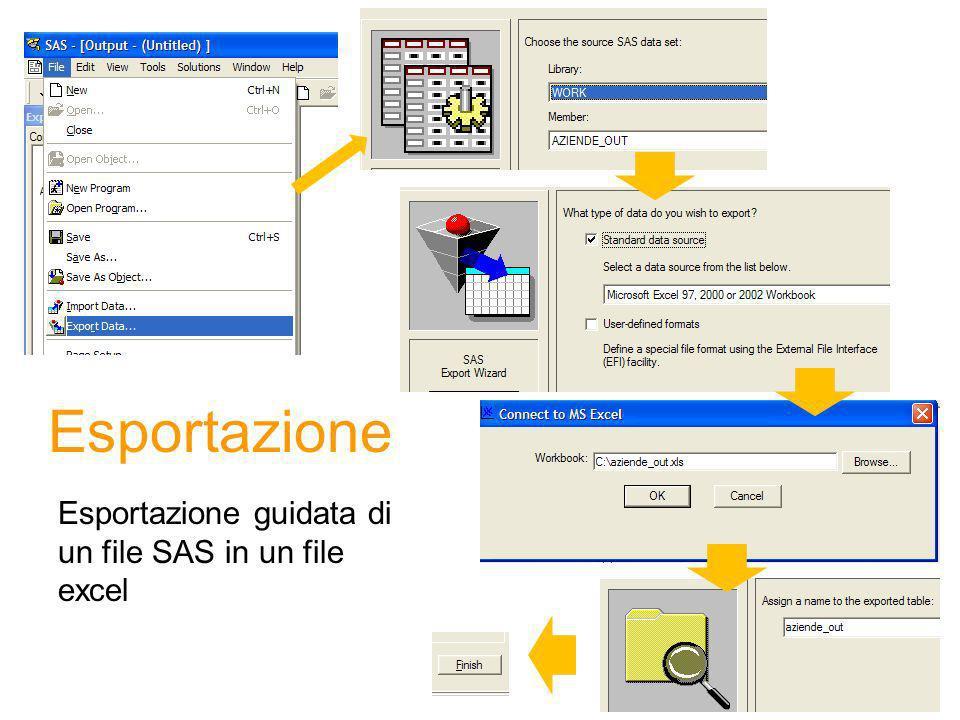 Esportazione Esportazione guidata di un file SAS in un file excel