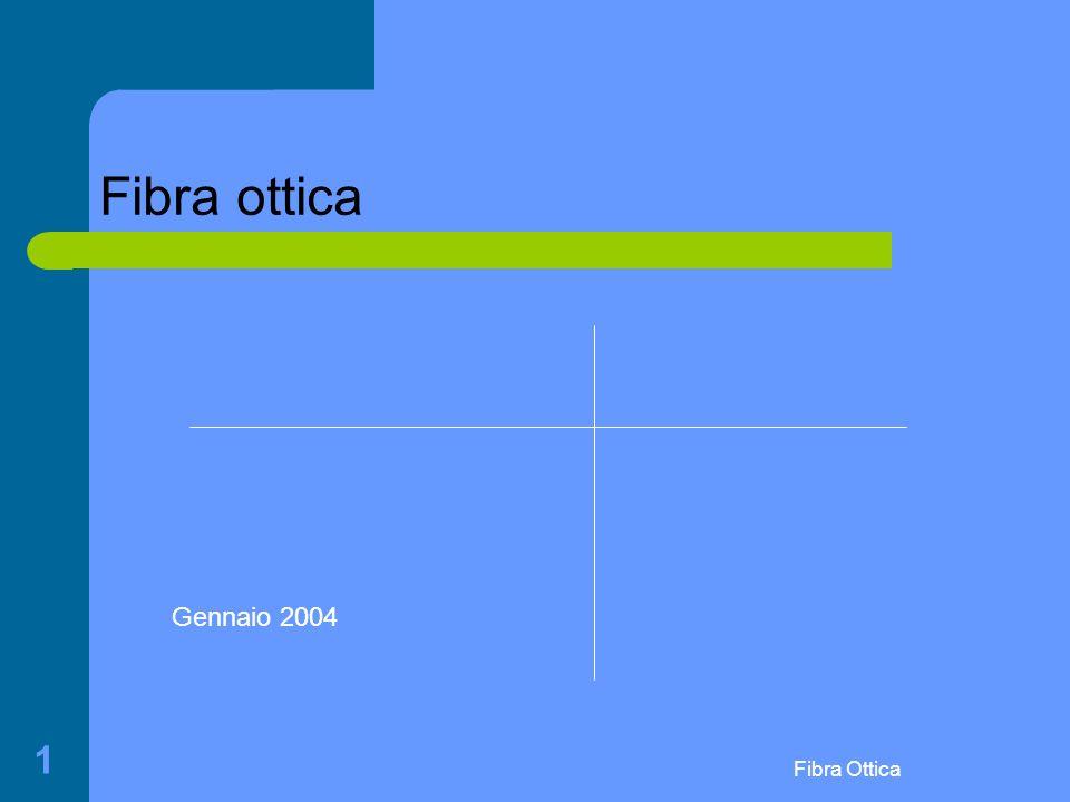 Fibra ottica Gennaio 2004 Fibra Ottica