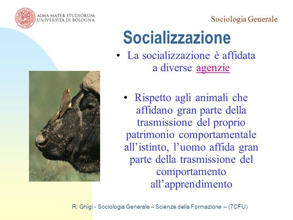 Socializzazione La socializzazione è affidata a diverse agenzie