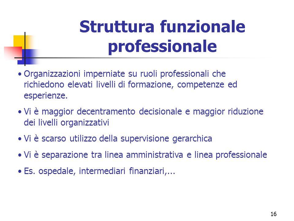 Struttura funzionale professionale