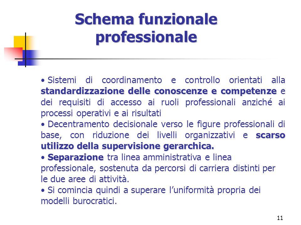Schema funzionale professionale