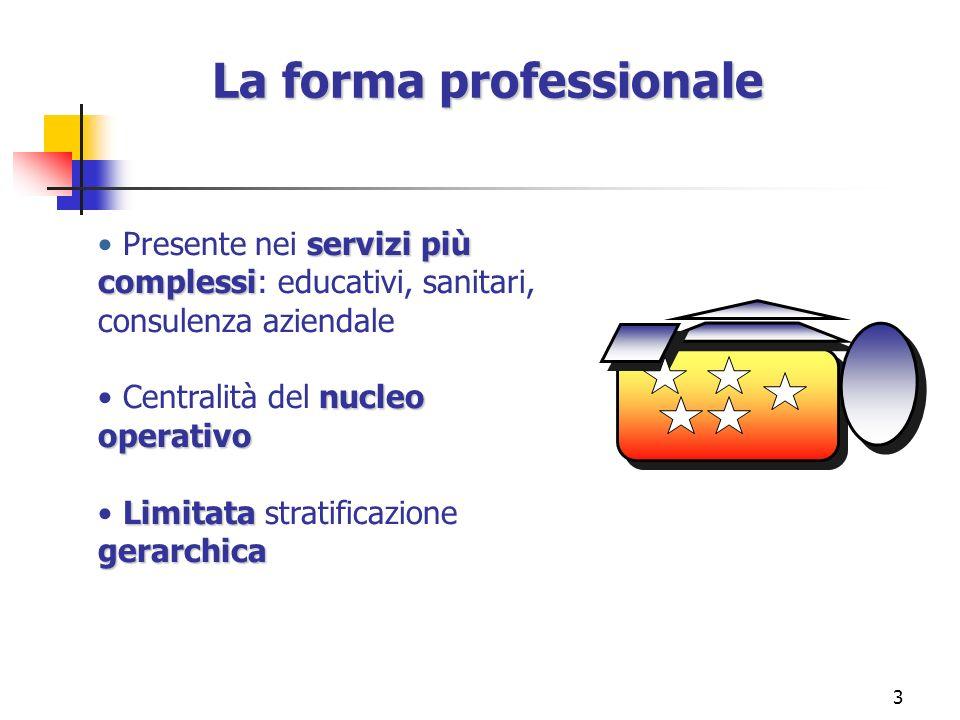 La forma professionale