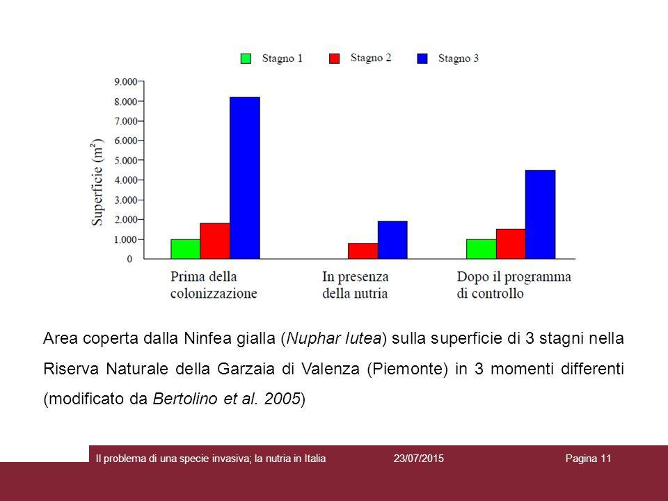 Area coperta dalla Ninfea gialla (Nuphar lutea) sulla superficie di 3 stagni nella Riserva Naturale della Garzaia di Valenza (Piemonte) in 3 momenti differenti (modificato da Bertolino et al. 2005)