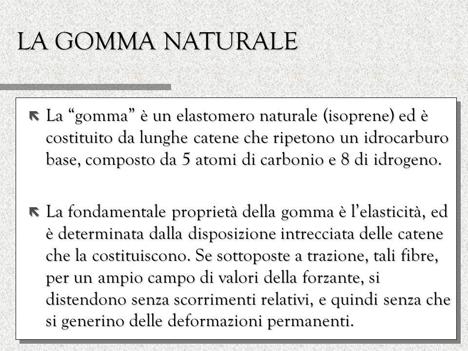 LA GOMMA NATURALE