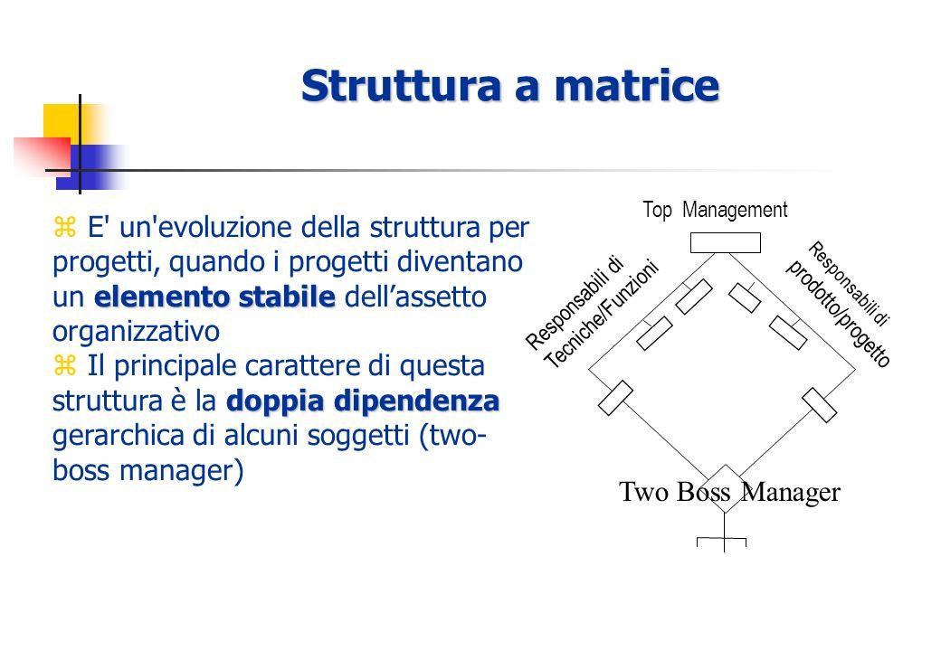 Struttura a matrice Top Management Responsabili di Tecniche/Funzioni