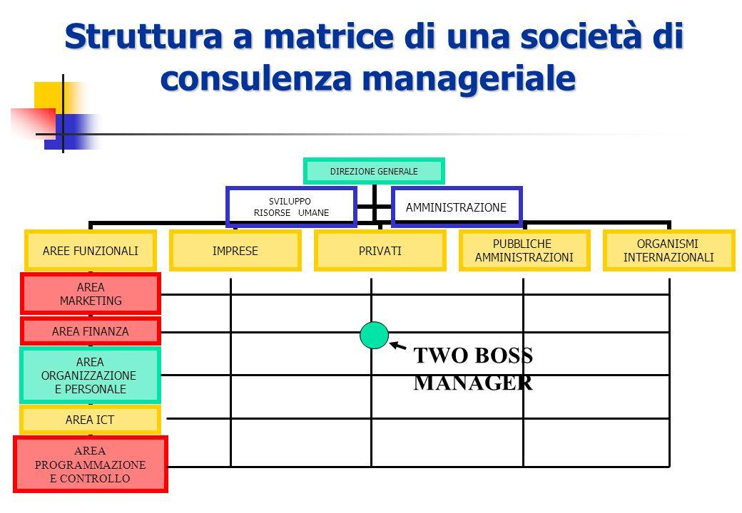 Struttura a matrice di una società di consulenza manageriale