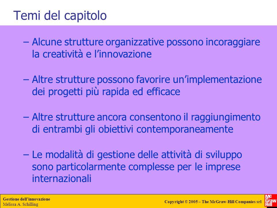 Temi del capitolo Alcune strutture organizzative possono incoraggiare la creatività e l'innovazione.
