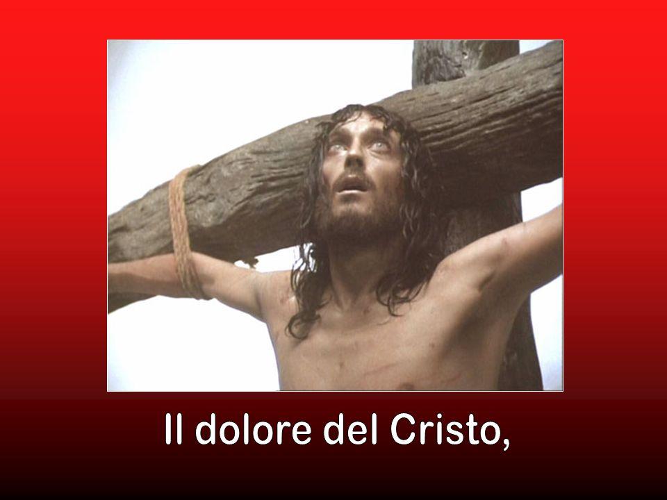 Il dolore del Cristo,