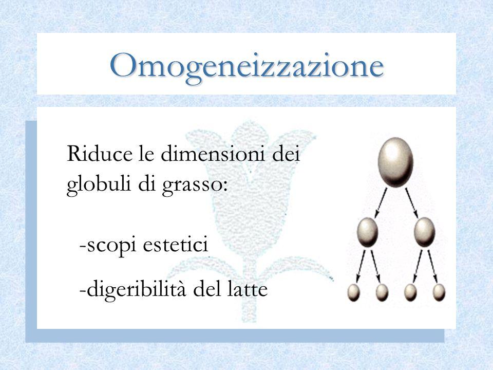 Omogeneizzazione Riduce le dimensioni dei globuli di grasso: