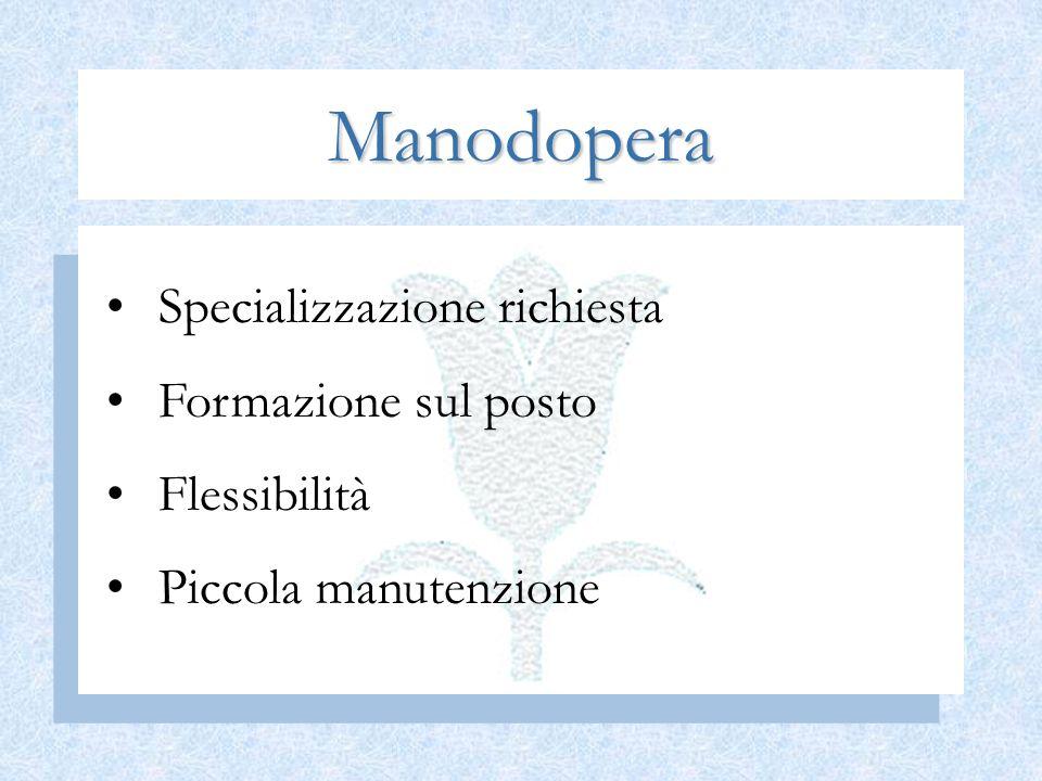Manodopera Specializzazione richiesta Formazione sul posto