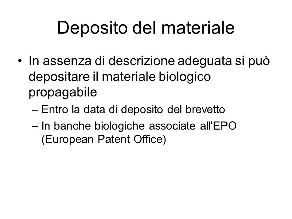 Deposito del materiale