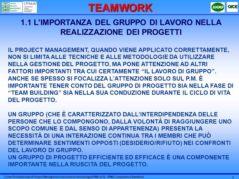 1.1 L'IMPORTANZA DEL GRUPPO DI LAVORO NELLA REALIZZAZIONE DEI PROGETTI