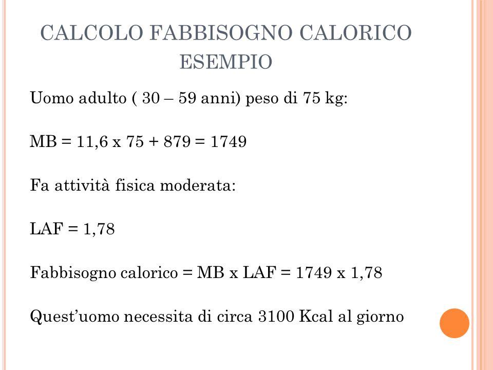 CALCOLO FABBISOGNO CALORICO esempio