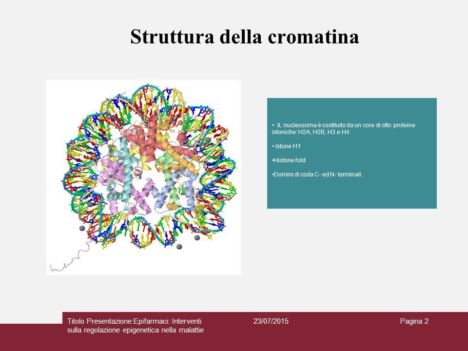 Struttura della cromatina