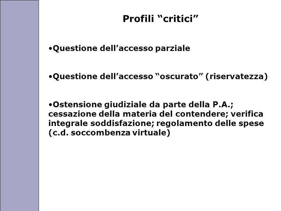 Profili critici Questione dell'accesso parziale