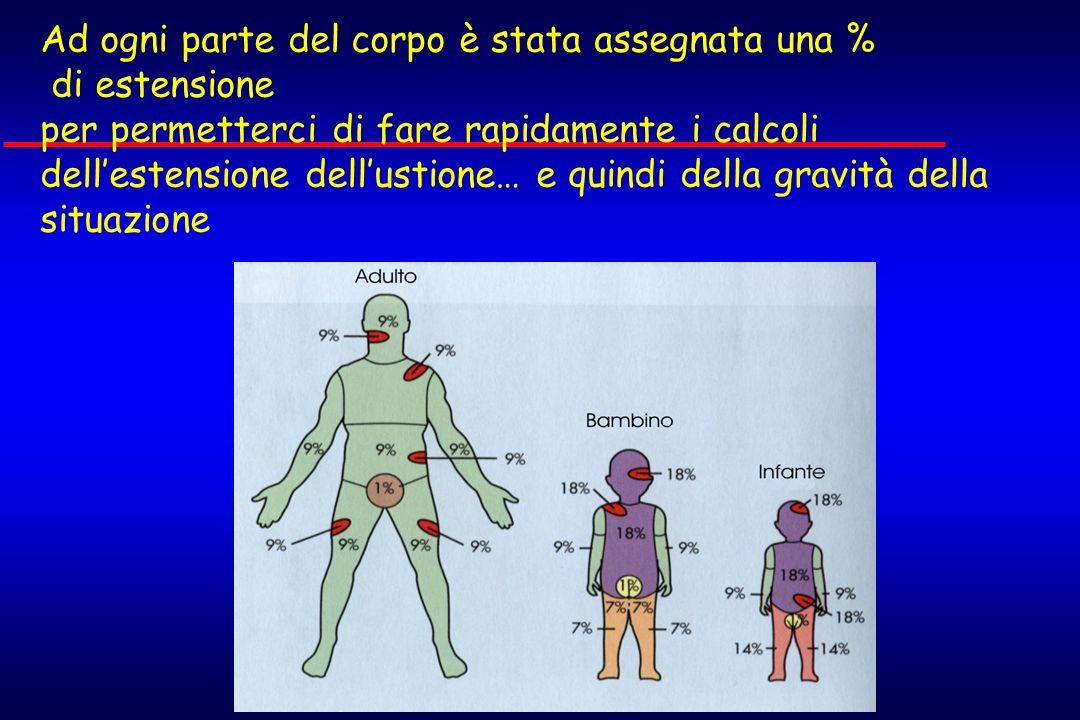 Ad ogni parte del corpo è stata assegnata una % di estensione per permetterci di fare rapidamente i calcoli dell'estensione dell'ustione… e quindi della gravità della situazione