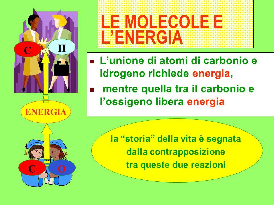 LE MOLECOLE E L'ENERGIA