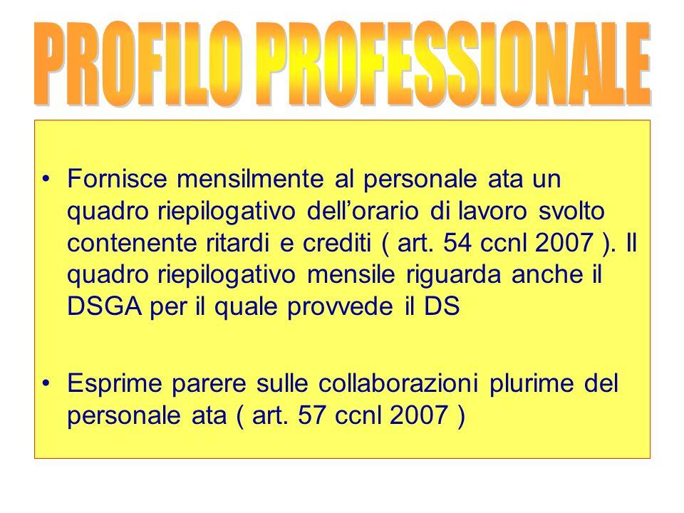 PROFILO PROFESSIONALE
