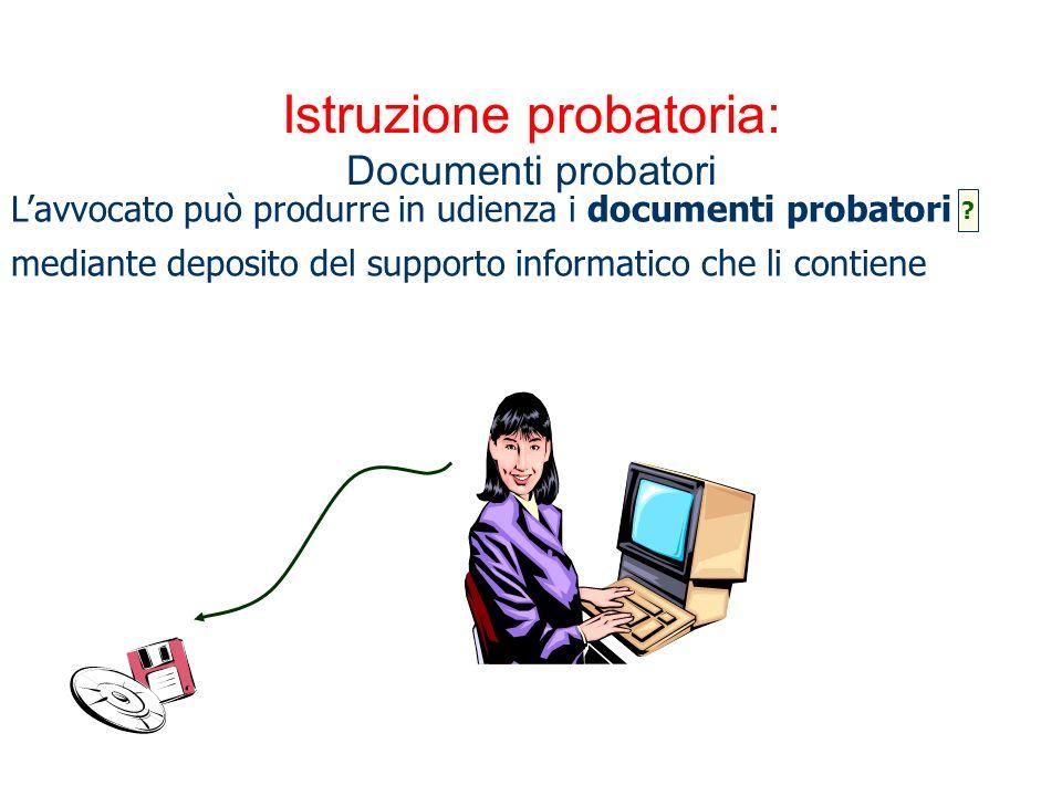 Istruzione probatoria: Documenti probatori