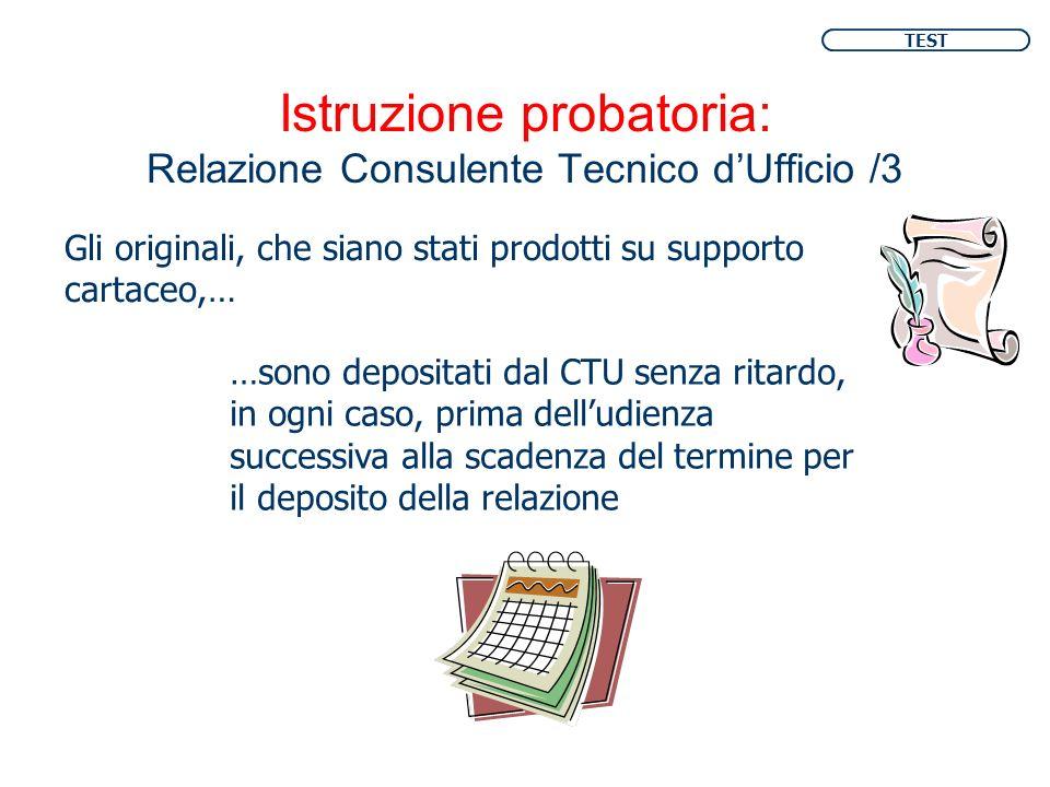 Istruzione probatoria: Relazione Consulente Tecnico d'Ufficio /3