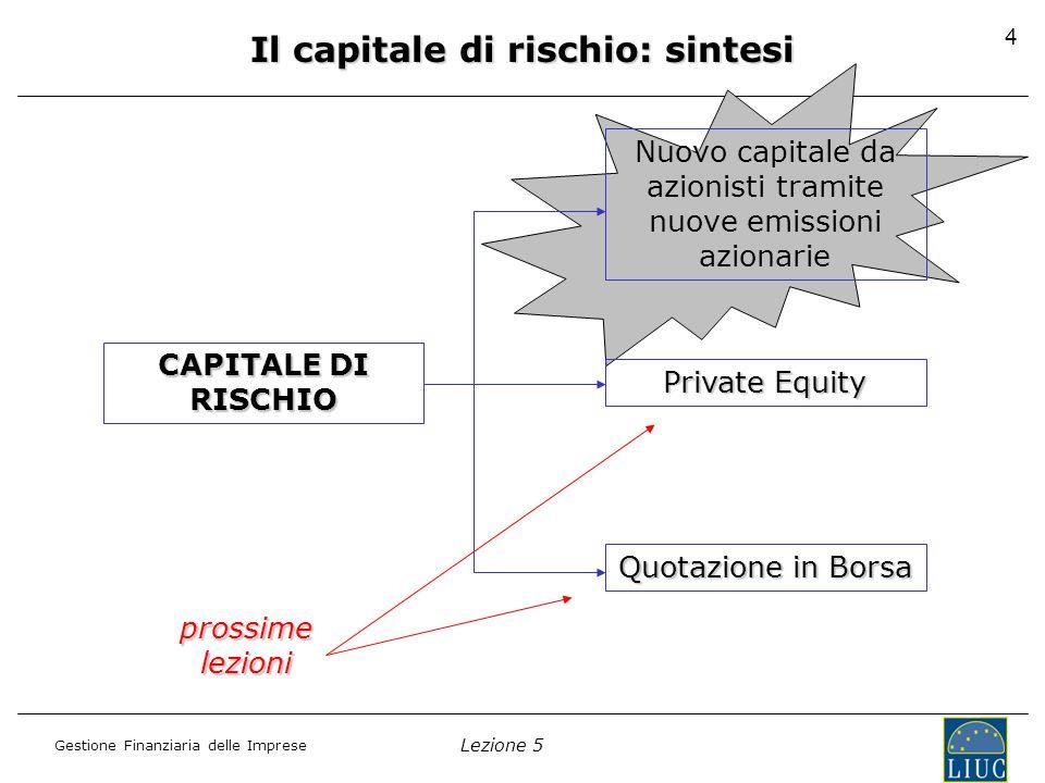 Il capitale di rischio: sintesi