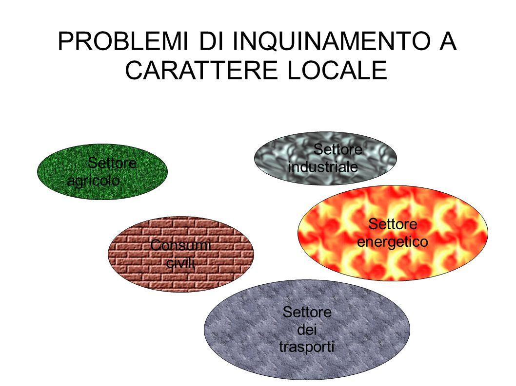PROBLEMI DI INQUINAMENTO A CARATTERE LOCALE