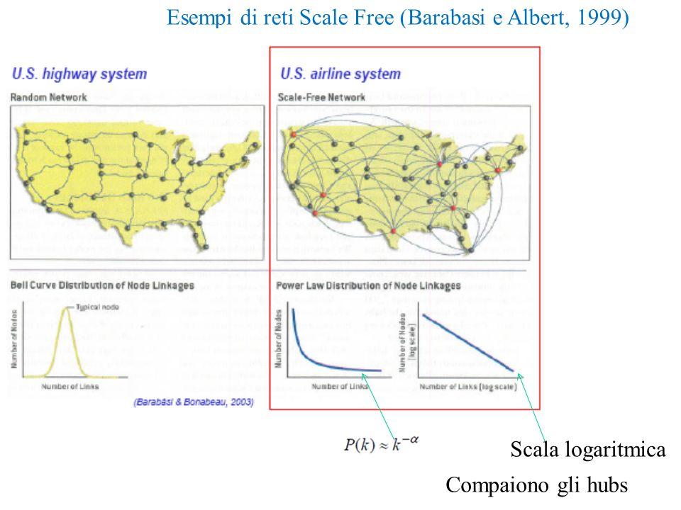 Esempi di reti Scale Free (Barabasi e Albert, 1999)