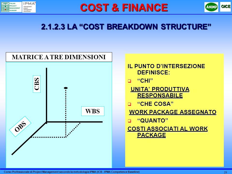 2.1.2.3 LA COST BREAKDOWN STRUCTURE MATRICE A TRE DIMENSIONI