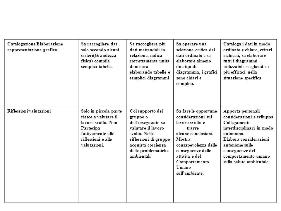 Catalogazione/Elaborazione
