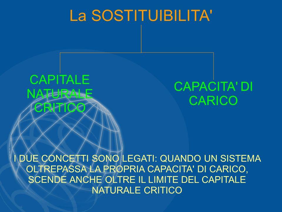CAPITALE NATURALE CRITICO