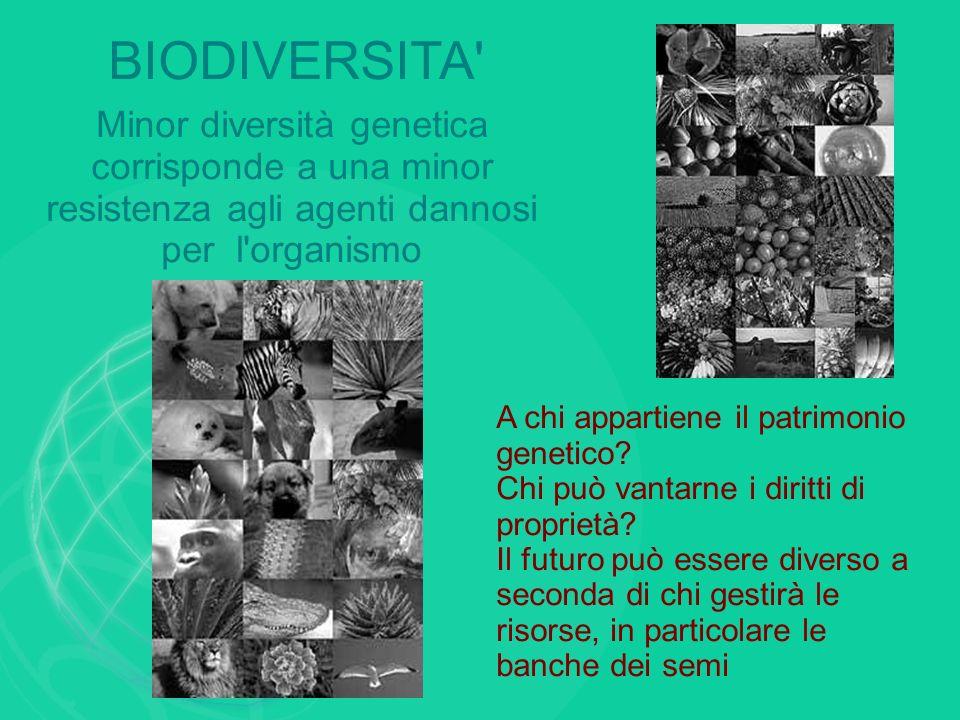 BIODIVERSITA Minor diversità genetica corrisponde a una minor resistenza agli agenti dannosi per l organismo.