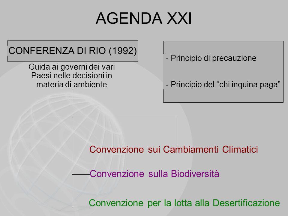 Guida ai governi dei vari Paesi nelle decisioni in materia di ambiente