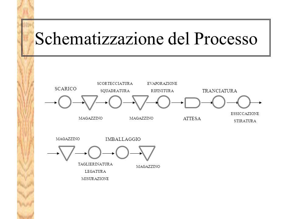 Schematizzazione del Processo