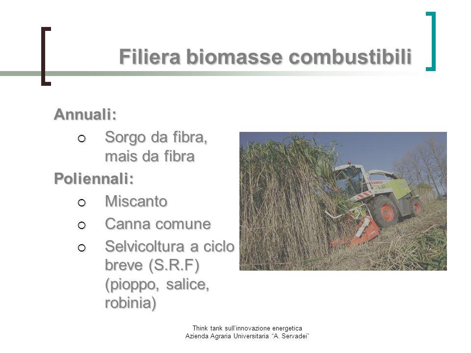 Filiera biomasse combustibili